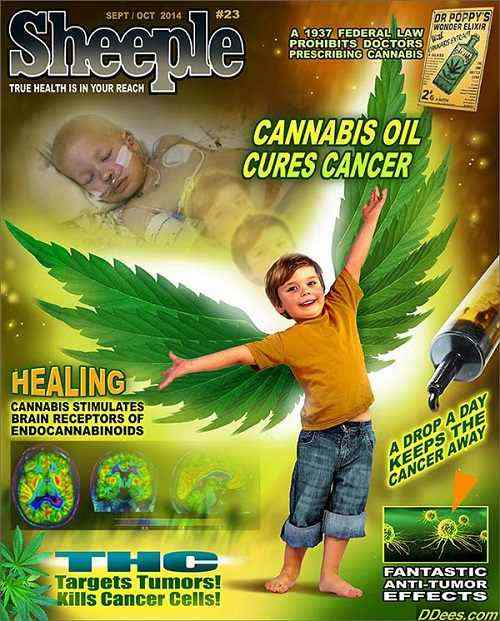 CANNABIS CURES!